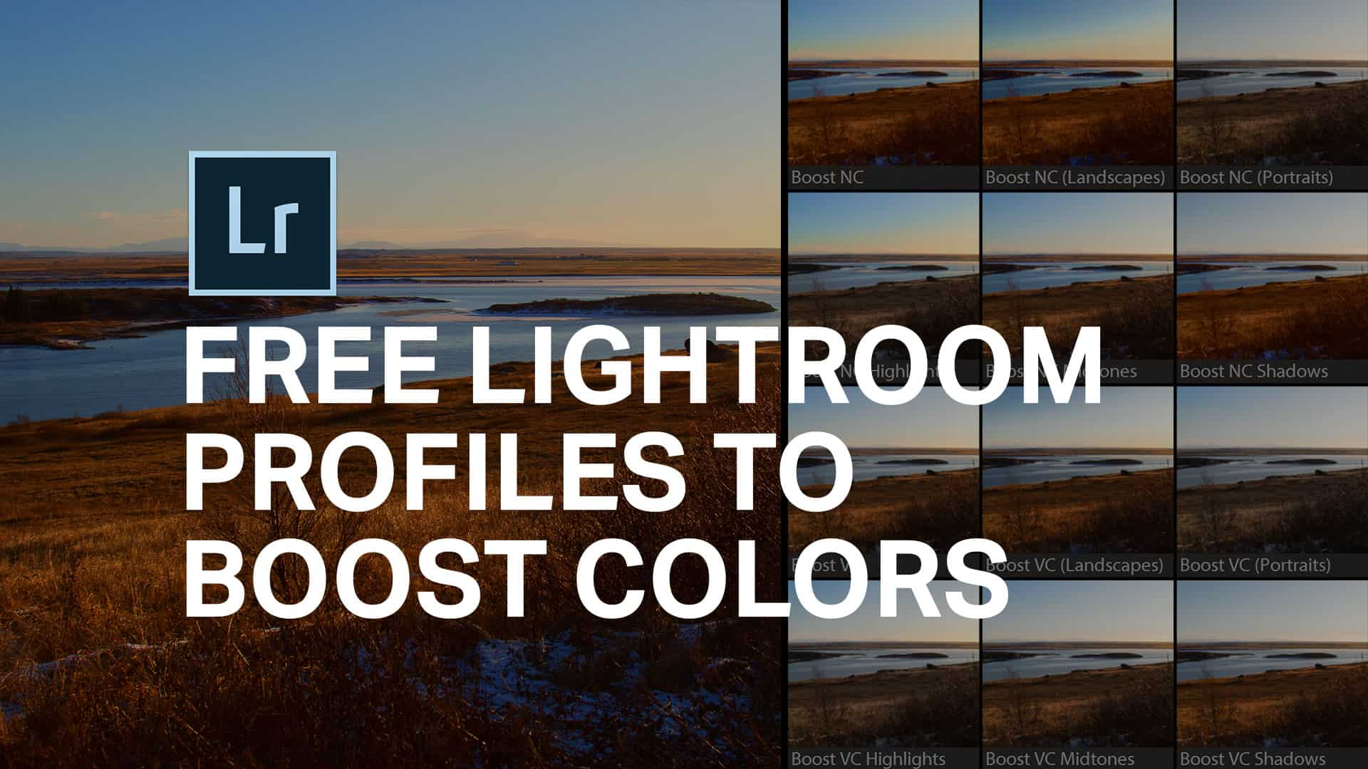 Colorboost Lightroom Profiles